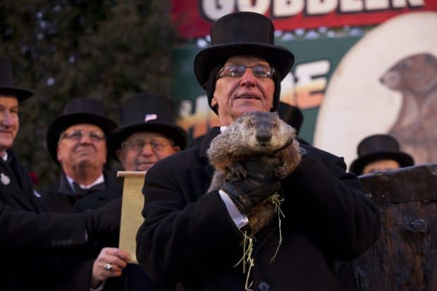 February groundhog day
