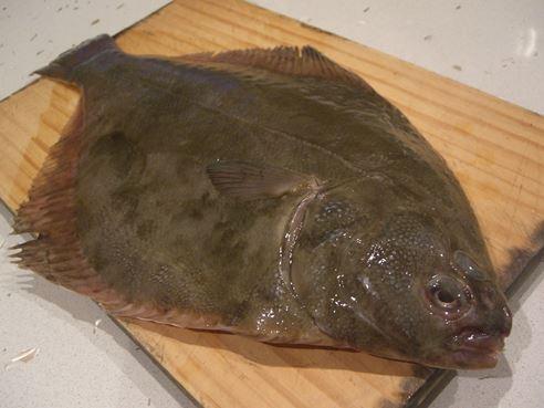 Stop Floundering Around
