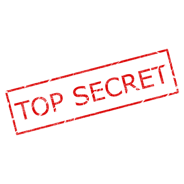 secrets of franchising consultants