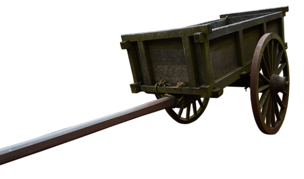 hitch your wagon to a franchise brand