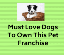pet services franchise
