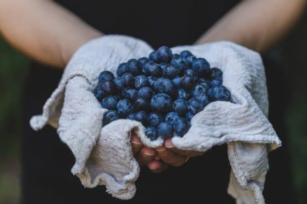 person holding fresh blueberries