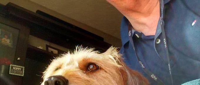 Franchise Dog and The Franchise King