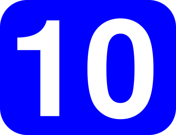 top 10 franchise success tips