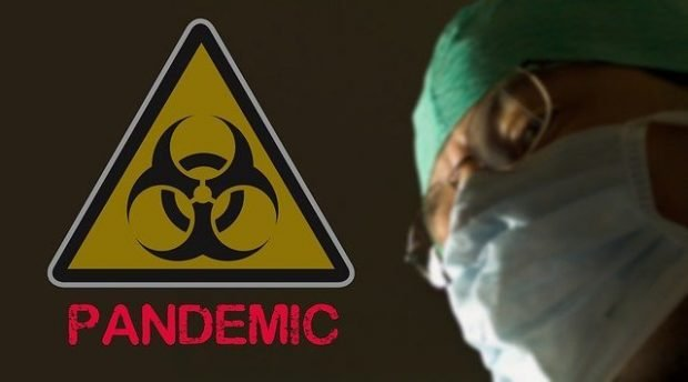the 2020 pandemic