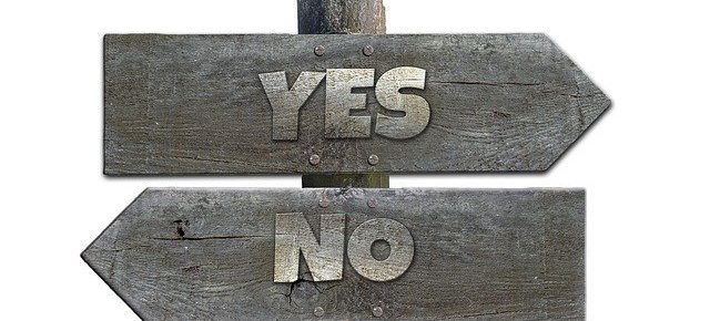 yes or no on the franchise business you want to buy